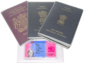 ebay-UK-Passport-Cover-Delphine-D